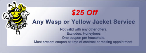wasp_coupon
