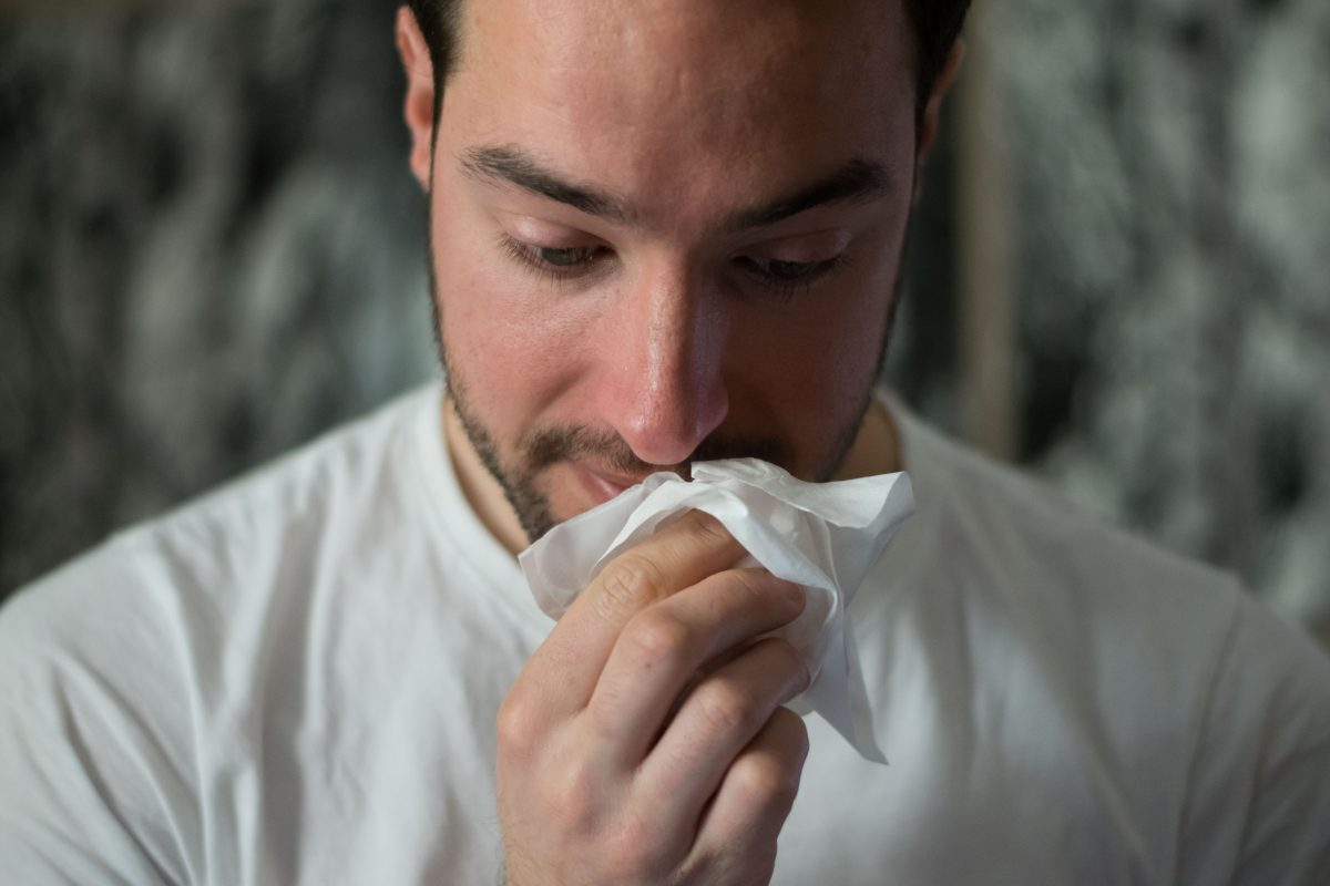 Control Pest Related Allergies